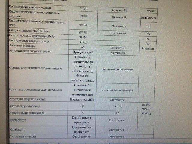 elektronno-mikroskopicheskoe-issledovanie-spermatozoidov-emis