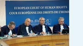 Европейский суд по правам человека: позиция Франции по вопросу суррогатного материнства нарушает права детей и родителей