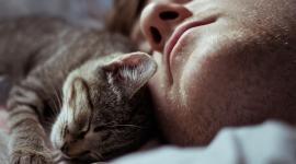 Сколько должен спать мужчина, чтобы завести ребенка?