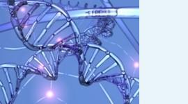 Найден ген, убивающий эмбрионы