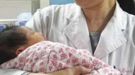Криобанки бьют рекорды хранения эмбрионов