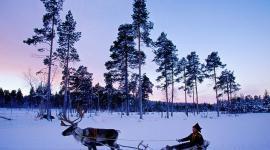 А как у них: финским клиникам ЭКО не хватает доноров спермы