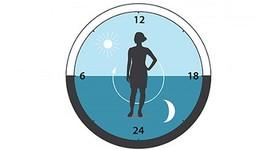 Диффузный эндометриоз тела матки, его признаки и лечение