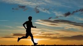 Физическая активность отца влияет на здоровье детей
