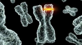 Качество спермы зависит от времени суток и сезона