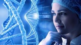 Найден новый фактор влияния на успех беременности