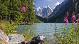 Бесплатное ЭКО на Алтае делают по плану