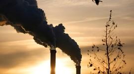 Доказано - загрязнение воздуха ведет к бесплодию