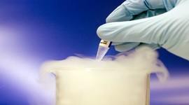 Криоконсервация эмбрионов будет включена в ЭКО по ОМС