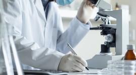 Полиспермия уменьшает шансы на зачатие