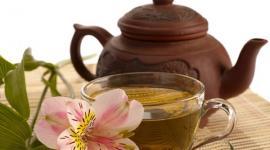 Зеленый чай может помешать успешному зачатию