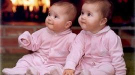 Рекорд: шесть пар близнецов за один месяц