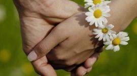 «Паспорт репродуктивного здоровья» для вступающих в брак?