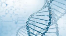 Ученые перекодировали ДНК для создания идеального человека