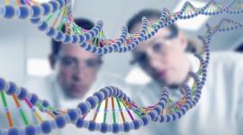 Создание эмбриона из ДНК трех человек предотвратит генетические заболевания