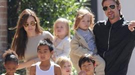 Анджелина Джоли хочет родить двойню с помощью ЭКО