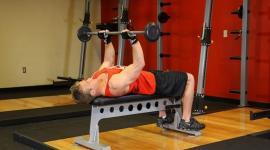 Занятия тяжелой атлетикой улучшают качество спермы