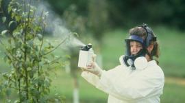 Пестициды провоцируют развитие эндометриоза