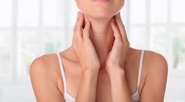 Щитовидная железа влияет на женскую фертильность
