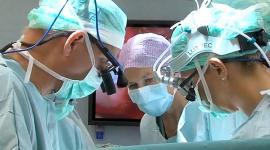 В США успешно провели операцию трансплантации матки
