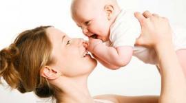 Ученые выявили механизм регуляции фертильности