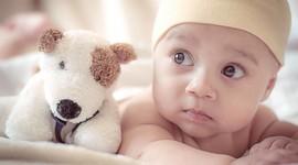 После криопереносов эмбрионов чаще рождаются девочки