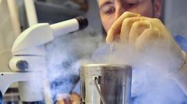 Врачи предупреждают о последствиях заморозки яйцеклеток