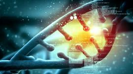 Ученые отредактировали геном человека
