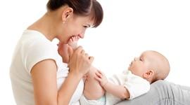 В Волгоградской области родилось 215 «ЭКО-детей»