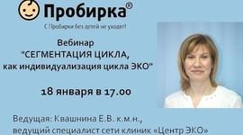 Протокол ЭКО: как получить квоту на бесплатное искусственное оплодотворение в Москве