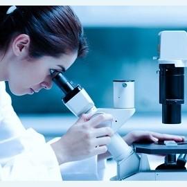 ERA открывает «окна»: генетический тест точно определит готовность к переносу