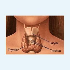 Щитовидной железы патологии