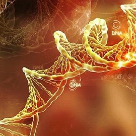 """Благодаря генетике на свет появляются """"дети будущего"""""""