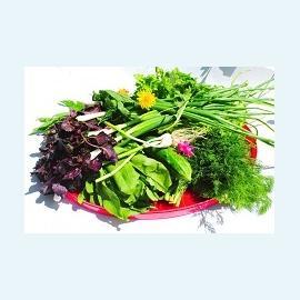 Мужская фертильность, газировка и шпинат