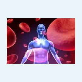 Заболевание гемофилия – этиология, признаки, профилактика