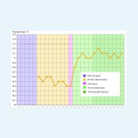 Базальная температура. Основные показания и их изменения