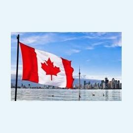 А как у них: ЭКО в Канаде
