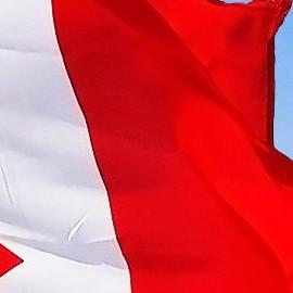 А как у них: канадцы хотят узаконить коммерческое сурматеринство