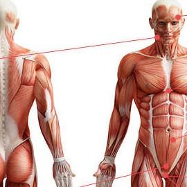 Признаки низкого уровня тестостерона у мужчин