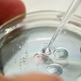 Некомфортные условия развития эмбриона увеличивают шансы на беременность