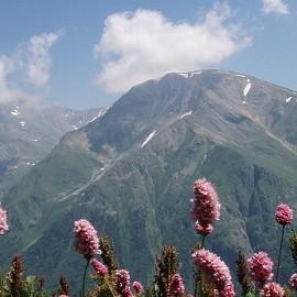 Курорты Северного Кавказа помогут забеременеть