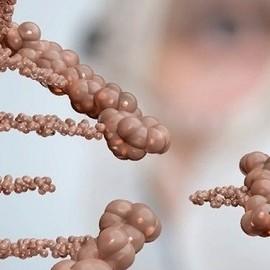 Ученые исправили мутацию ДНК эмбриона в  утробе мыши