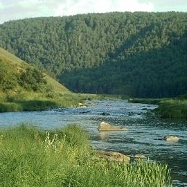 В Башкирии увеличивают число бесплатных ЭКО