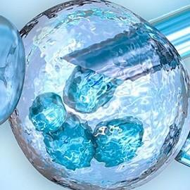 Результаты ЭКО различны для свежих и замороженных ооцитов