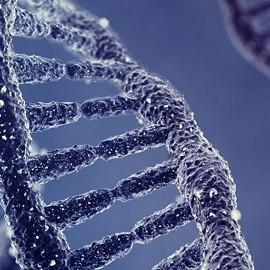 Ген мужского бесплодия обнаружили в Китае