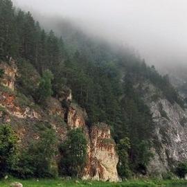 В Башкирии увеличат число бесплатных ЭКО