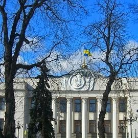 Рада отклонила закон об ограничениях ВРТ