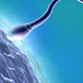 Диабет может привести мужчину к бесплодию