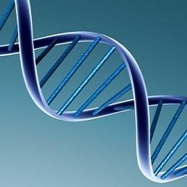 Как влияет курение во время беременности на ДНК плода