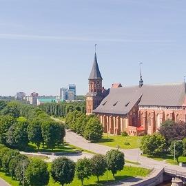 В Калининграде выделяют средства на ЭКО